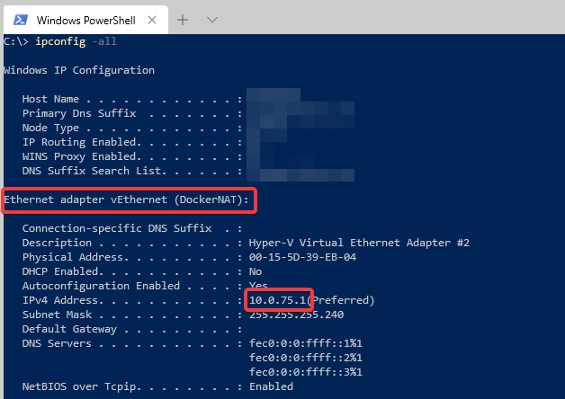 ipconfig showing docker NAT ethernet adapter with ip 10.0.75.1